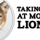 Taking a look at Mountain Lion OSX